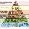Odżywianie i naturalne wspomaganie Wiąże się to nierzadko z brakiem profesjonalnych źródeł informacji oraz pomocy ze strony ośrodków sportowych w zakresie prawidłowego prowadzenia młodego zawodnika pod kątem diety. Temat ten...